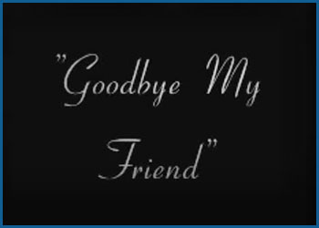 vid_goodbyemyfriend